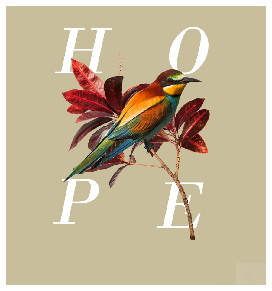 Hope Graphic Edit